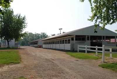 Equine Barns